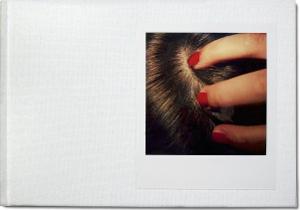 Polaroid Sx-70 Bengt-arne Falk